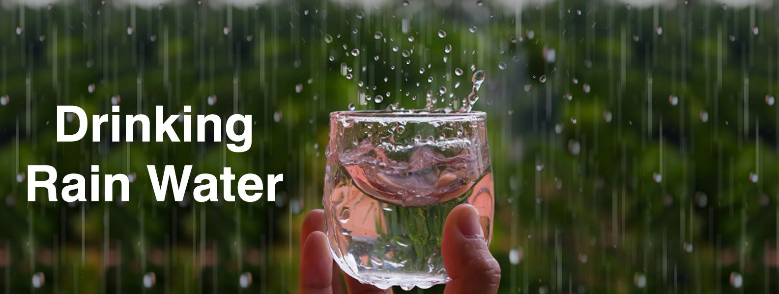 DRINKING RAIN WATER – HEALTH ADVANTAGES AND DISADVANTAGES