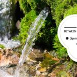 What's the difference in different drinking water types – Spring Water, Natural Mineral Water & Packaged Drinking Water