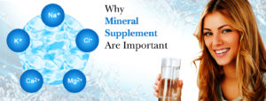 Why Mineral Supplement Are Important?
